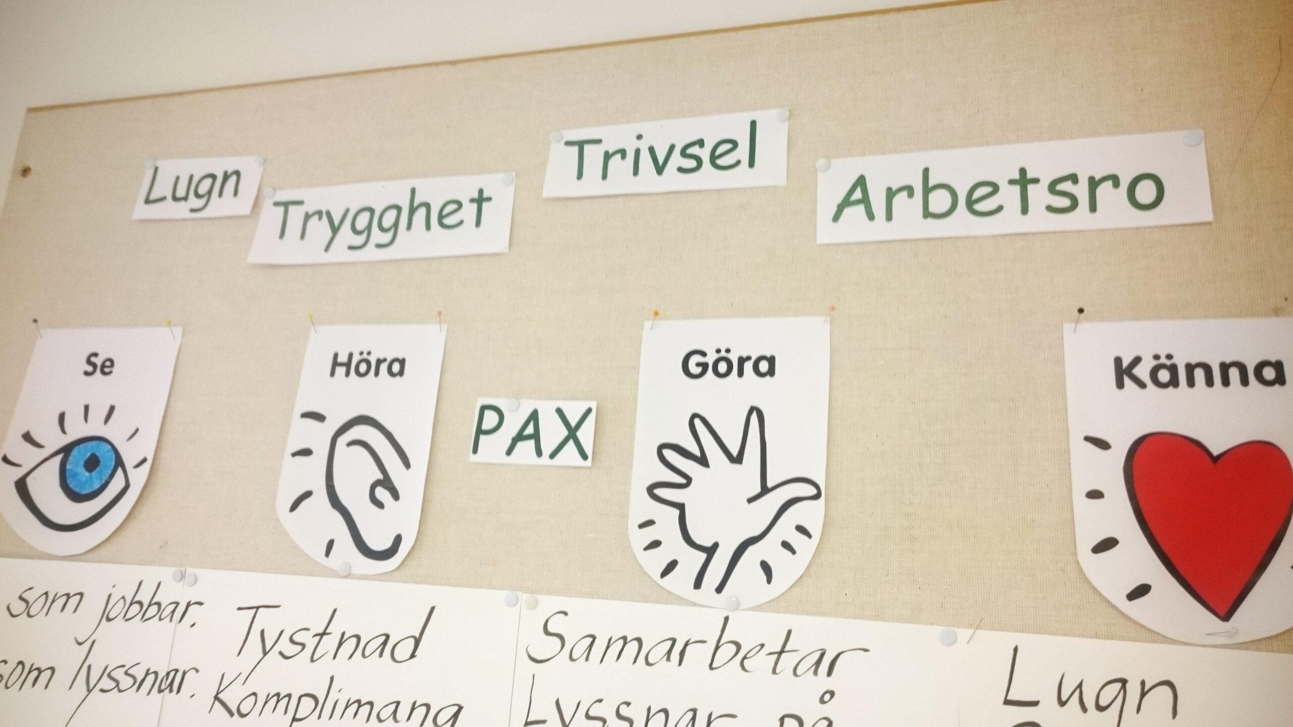 Pax i skolan, Vision